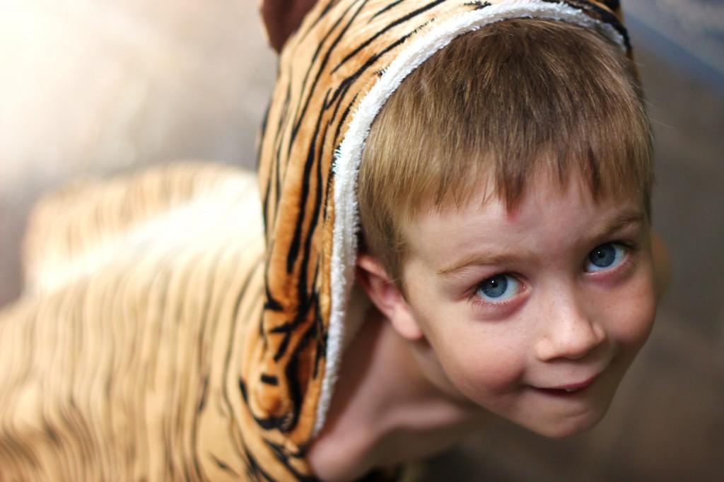 Tiger Towel 1
